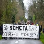 Les Indignés, les ZADistes, Occupy – Ce sont les meilleurs d'entre nous! (Chris Hedges)