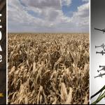 L'industrie agroalimentaire est cinglée, exemple: maïs et soja! (Isabelle Saporta)