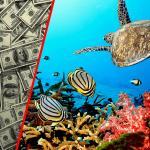 Les océans NE VALENT PAS 24 trillions de $! – (Charles Eisenstein)