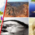 Le développement durable est en train de détruire la planète! (par Kim Hill)