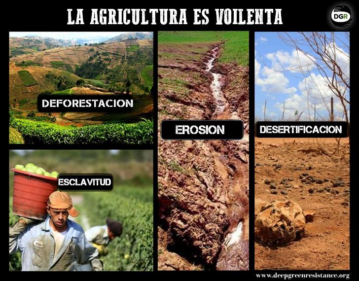 """La agricultura es una invención reciente, de los últimos 10,000 años. Antes de la agricultura, cultivar plantas todavía era parte de las culturas humanas por cientos de miles de años. Pero no al grado de hacer una """" agricultura totalitaria"""". La emergencia de la agricultura totalitaria también fue acompañada por la emergencia de la esclavitud, de los Imperios, el allanamiento aumentado por la conversión de los paisajes en monocultivos, el agotamiento de suelo, el agotamiento de los mantos acuíferos y una limpieza total biótica."""
