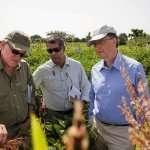 La fondation Gates, fer de lance du pillage néolibéral de l'agriculture africaine (par Colin Todhunter)