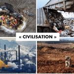 Le problème de la civilisation (par Derrick Jensen)