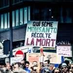 Monsanto+Bayer=MoBay: le cartel des empoisonneurs contre la planète (par Vandana Shiva)