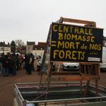 Les illusions vertes: brûler des forêts (ou des monocultures d'arbres) pour l'électricité