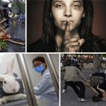 La culture de l'abus — Endgame Vol. 1: Le problème de la civilisation (par Derrick Jensen)