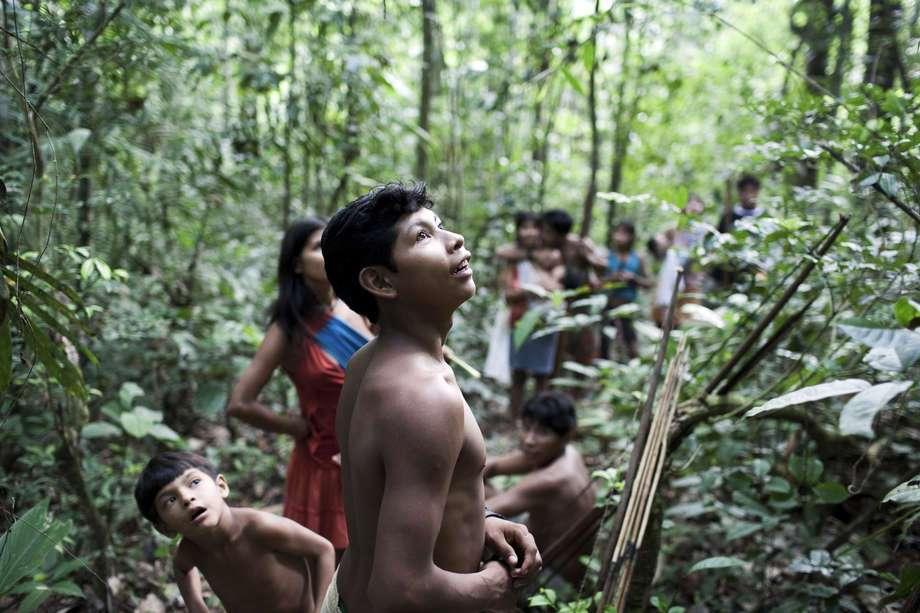 Los Awa cazadores recolectores (Brasil)